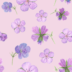 Watercolor floral seamless pattern with Forest geranium flowers on white background. Could be used as decoration for web design, polygraphy or textile