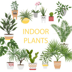 potted plants and flowers in different pots and planters. vector illustration in watercolor style. plants in the interior