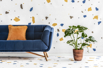 Green monstera plant next to a dark blue sofa with an orange pillow in a white living room interior with lastrico wallpaper. Real photo.