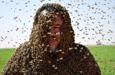 A Saudi man with his body covered with bees poses for a picture in Tabuk