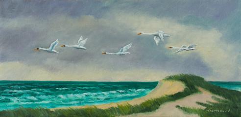 Vier Zugvögel fliegen an der Küste über dem Meer