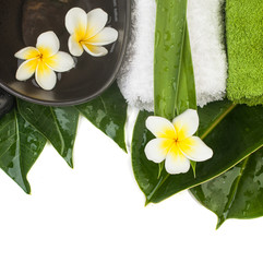 tropical objects for healthy massage on white in spa salon