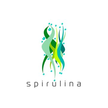 Illustration of superfood algae - spirulina in flat style. Isolated organic healthy food