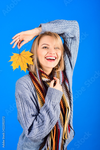 f7999c70e4 Happy woman in gray sweater colorful scarf holds yellow maple leaves. Autumn  female fashion. Lady with golden leaf in elegant autumn clothes. Season  sales.