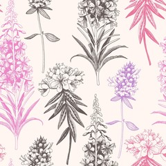 Vector hand drawn meadow flowers seamless pattern