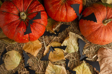 Pumpkins, candles, mouse voles, on the leaves. The autumn texture, the concept of Halloween