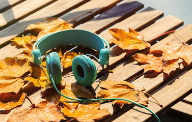 vintage headphones with maple leaves on wooden table. Side view