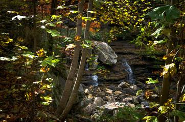 Waterfall and Foliage