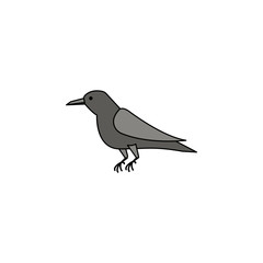 crow colored illustration. Element of Halloween for mobile concept and web apps. Colored crow illustration can be used for web and mobile