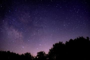 starlight delight