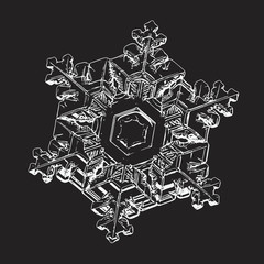 Snowflake isolated on black background. This illustration based on macro photo of real snow crystal: beautiul star plate with six short, elegant arms, relief surface and complex inner pattern.