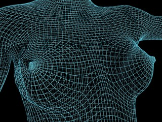 Polygonal female breast. Wire frame style. 3D rendering