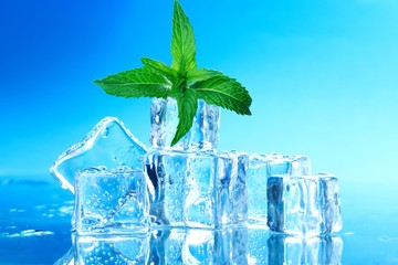 ice cubes with mint leaves
