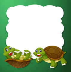 Green turtle frame concept
