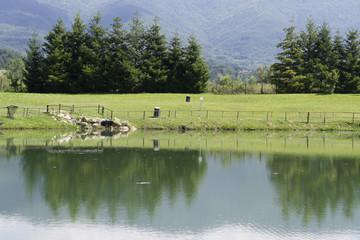 veduta di un lago in campagna