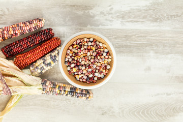 Cheerful and Colorful dried Indian Corn on light wooden surface as decoration for Thanksgiving Table, Halloween, and the Fall Season.