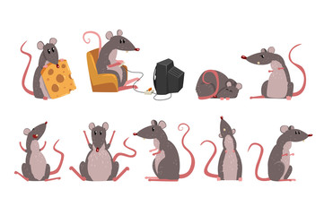 Cute grey mouse set, funny rodent character in different situations vector Illustrations
