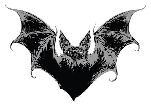 Ghost bat vector illustration