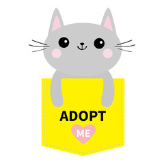 Adopt me. Dont buy. Cat in yellow pocket. Pet adoption. Kitten kitty. Pink heart. Flat design. Help homeless animal concept. White background. Isolated.