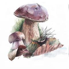 Акварельные грибы