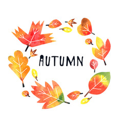 fall autumn leaves greetings card on white background