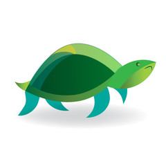 Turtle icon on white logo vector image icon illustration