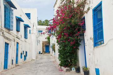 Tunisia white and blue city Sidi Bou Said street