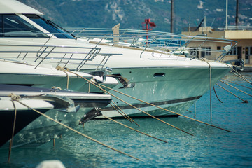 Luxury yachts in the port.