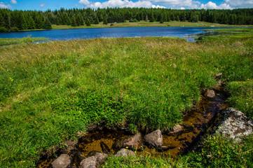 Fototapeta lake of charpal ,lozere,france