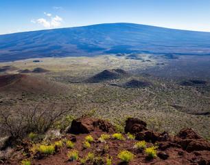 View from Mauna Kea: Mauna Loa and cinder cones on the saddle.