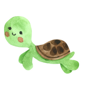 Turtle Cartoon watercolor on white background , Hand drawn character for Kids, Greeting Card , Cases design, Postcards, Product, Notebook and more