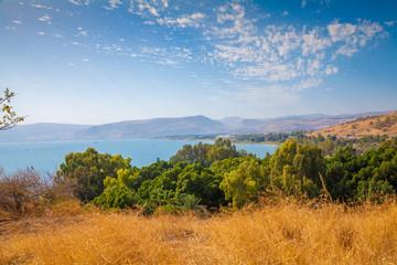 Fototapete - Seashore in Tabgha, Sea of Galilee, beautiful nature of Israel