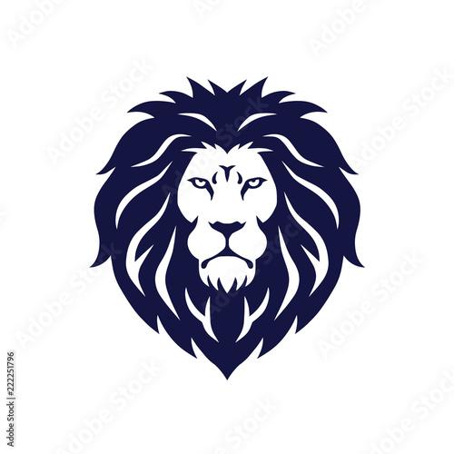 Lion Head Logo Vector Mascot