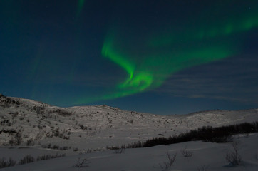 Aurora Borealis,Northern lights over the tundra in winter.