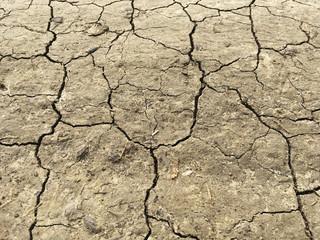 Ausgetrockneter Erdboden durch Hitze mit Risse