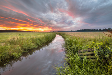 Wall Mural - Warm summer sunrise over lowland river