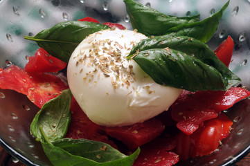 Insalata Caprese Gastronomia インサラータ・カプレーゼ Կապրեզե Cucina italiana   ft81070833 Italian cuisine سلطة كابريزي