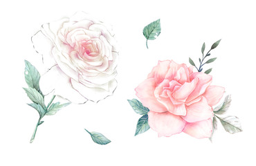 Watercolor flowers. floral illustration, Leaf and buds. Botanic composition for wedding or greeting card.