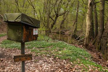 Natura Trail, Wandern in Brandenburg
