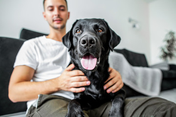 freelancer guy sitting at home working in laptop and with dog in arms, black labrador.