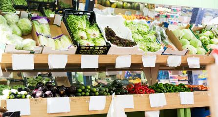 Various vegetables in greengrocery