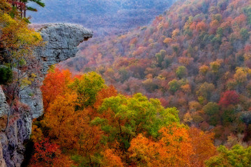 Hawksbill Crag with Autumn Color