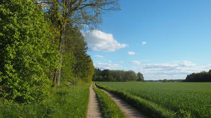 road in sweden