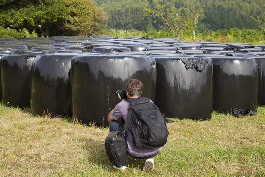 Man bended, taking photos from bales of straw wrapped up in black plastic over a green field in summer, Galicia, northern Spain.