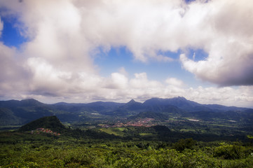 Fantasy Tropical Landscape