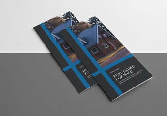 Business Tri-fold Brochure Layout