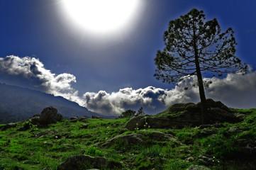 Plaine montagneuse à contre jour avec effet féerique