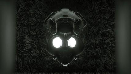 skull / death mask