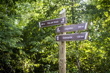 A signpost close-up with a forest in the background. Sigulda, Latvia