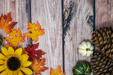Autumn background concept with pine cones, gourds, sunflower and fall maple leaves on a wooden background